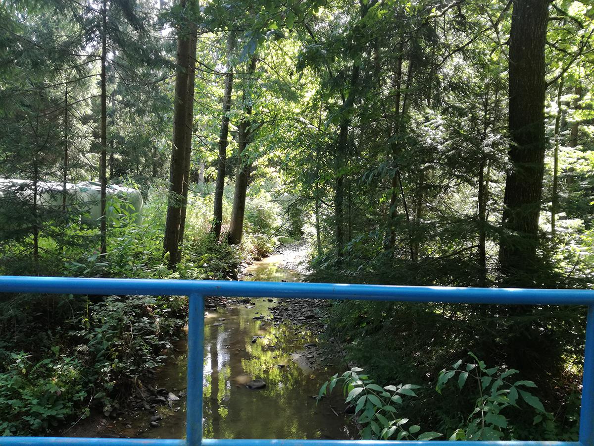 Potok Homšnica na lokaciji predvidenega suhega zadrževalnika visokih voda Homšnica.