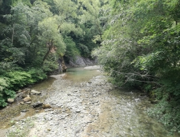 Slika 5: Meža, Poljana